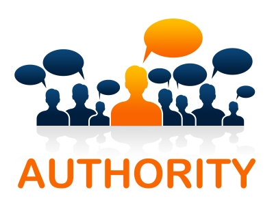 domain authority ¿Qué es el Domain Authority DA y el Page Authority PA?