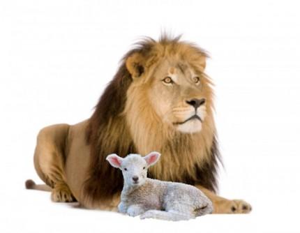 leon cordero e1413914828556 7 cosas que un SEO debería aprender de un blogger