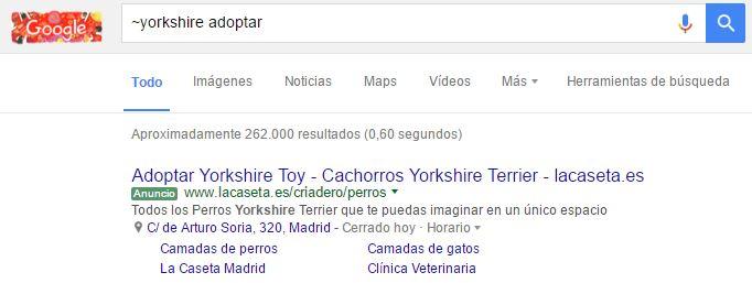 google búsquedas relacionadas