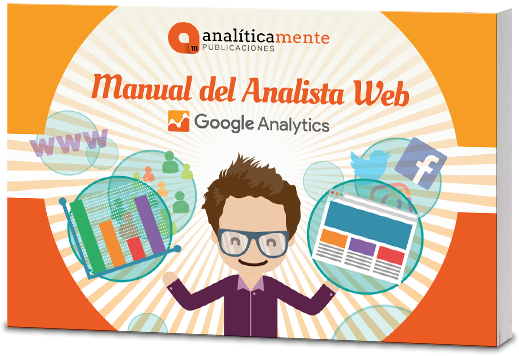 manual del analista web