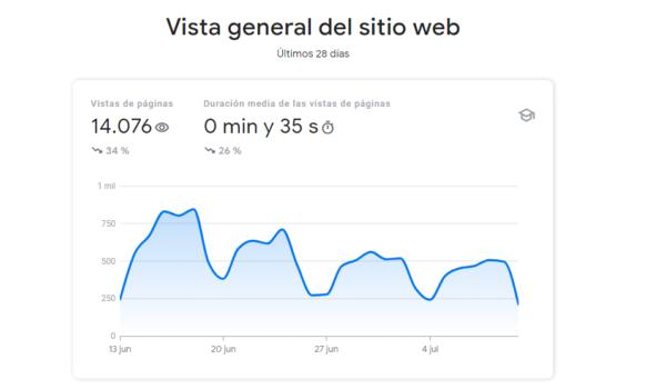 vista general google console insights